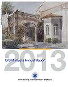 isis activities report 2013